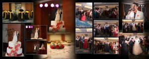 Wedding Videographer Mapusa
