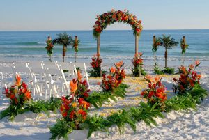 Wedding Planner Aldona