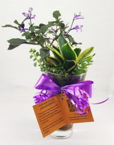 Customized Plant Table Pieces In Goa