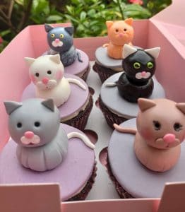 Cakes in Goa