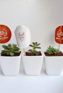 Plant wedding takeaways